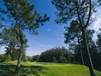 lisbon sports club Golf Course in Cascais - Lisbon