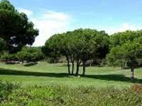 quinta do lago south Golf Course in Almancil - Algarve