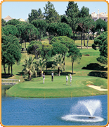 Welcome to PropertyGolfPortugal.com - pinheiros altos -  - Portugal Golf Courses Information - pinheiros altos