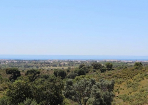 Land for sale in Tavira - EMA12760